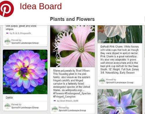 Sponzilli Pinterest Idea Board