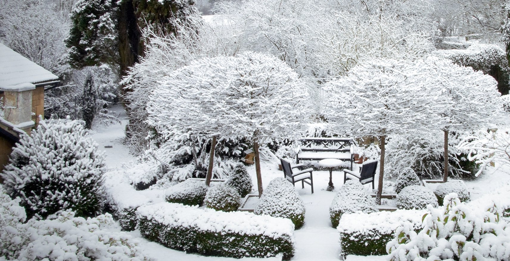 Beautiful Snow-Covered Backyard