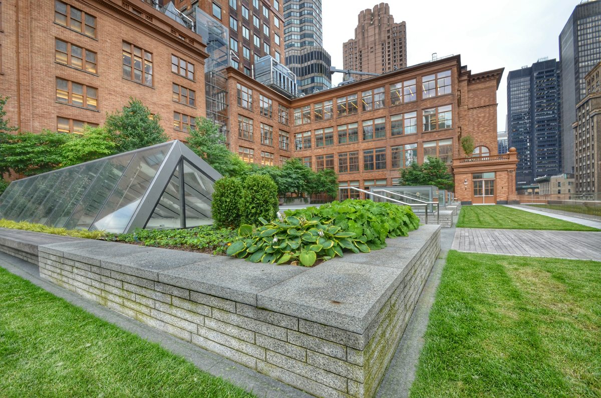 Weill Terrace at Carnegie Hall Green Roof by Sponzilli