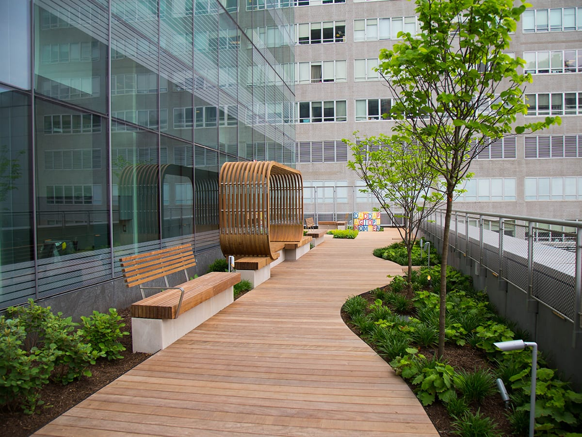 Hassenfeld Children's Hospital Terrace Landscaping