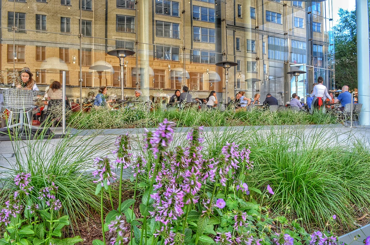 Whitney Museum Landscaping