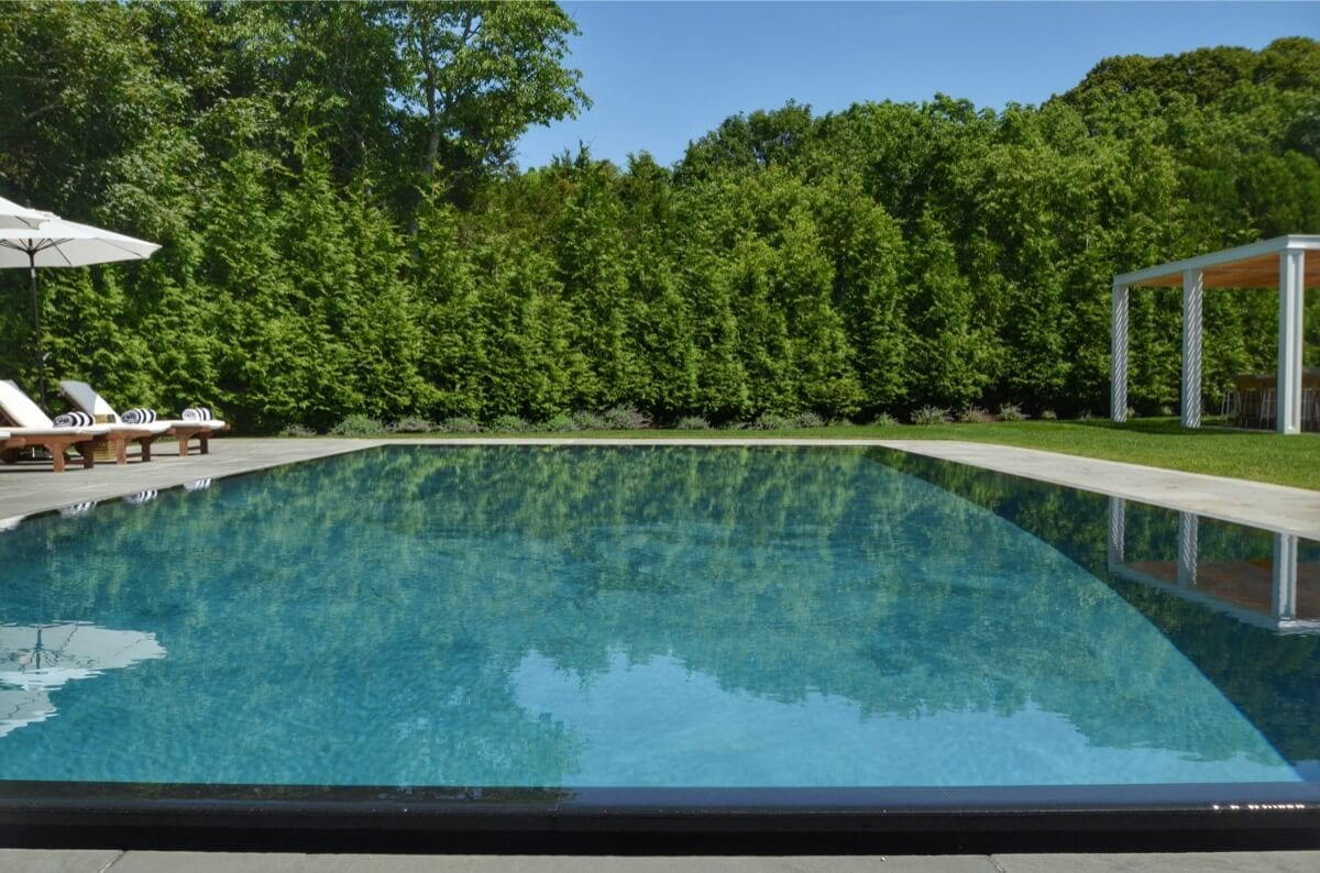 Pool with Mirror Edge - Evergreens and Privet Hedge for Privacy