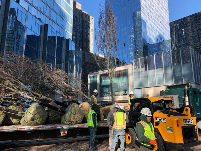 Landscapers planting trees at Waterline Square NY