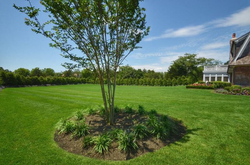 Organic Lawn Care NJ