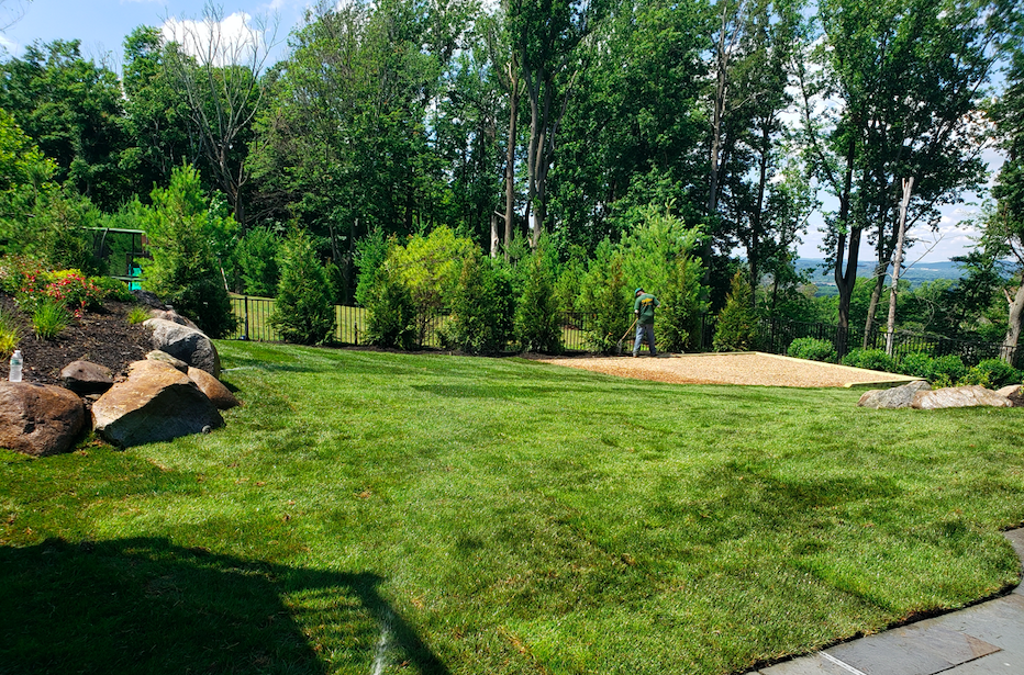 What is a landscaping job like , what should I expect from a landscape designer , types of landscaping , great expectations , maintenance , front yard , backyard