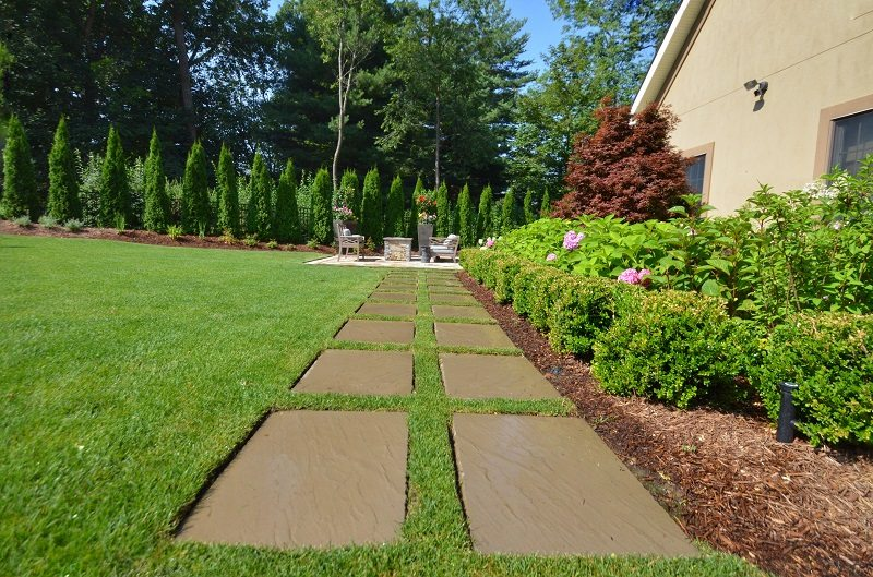 bushes shrubs pruning pavers backyard landscaping