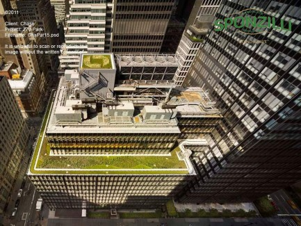 Aerial View of JP Morgan Chase Green Roof