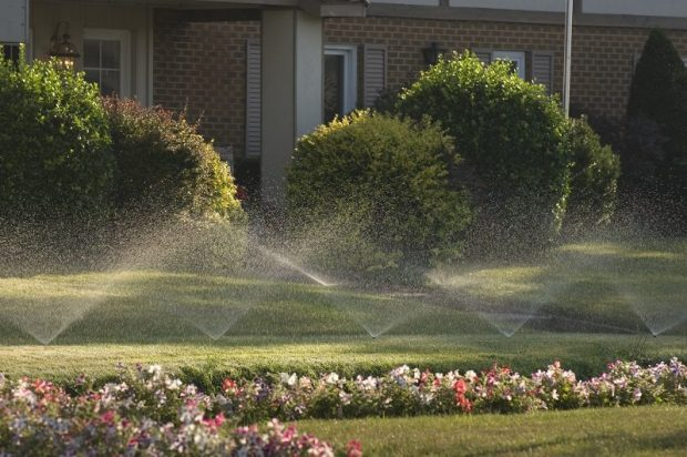 Sprinklers Irrigation Landscaping