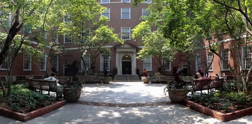 Landscaping at NYU Law School