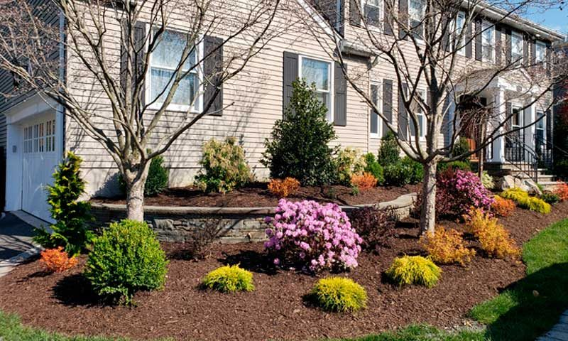 Garden bed in front of home with seasonal plantings, how-to-add-pops-of-color