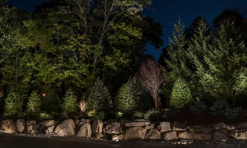 Rock wall with trees and shrubs lit with award winning landscape lighting, outdoor-lighting-for-seasonal-display