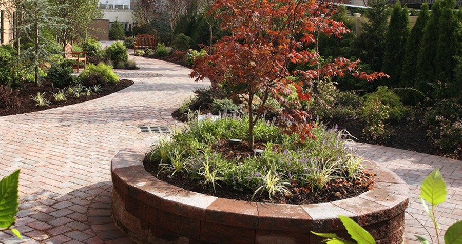 Gardens and Planting Beds