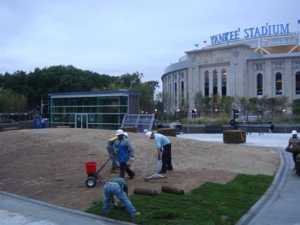 Landscape Construction - Laying Sod at Yankee Stadium