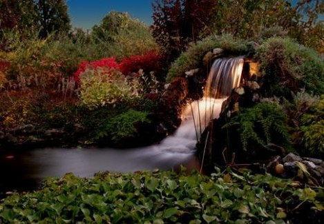 Waterfall with Landscape Lighting