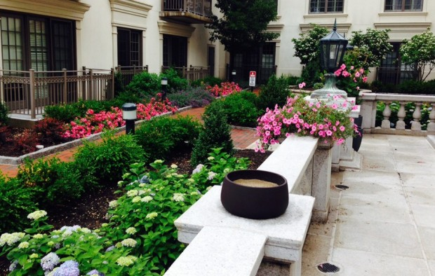 New Landscaping at Vail Mansion
