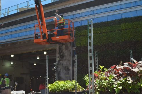 Men Constructing a Green Wall at Liberty Park