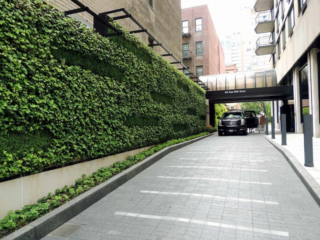 Design Green Landscapes: Gracie Mews Living Green Wall