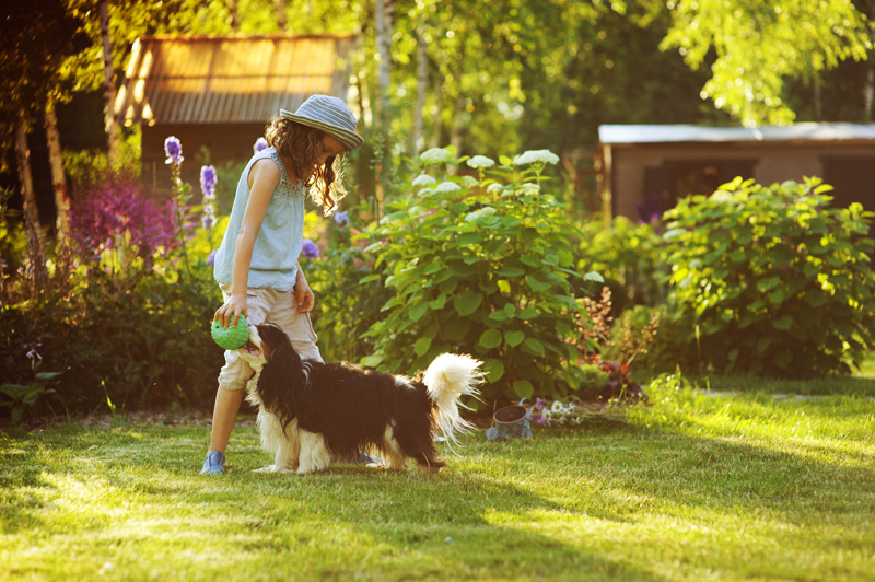 Girl playing with her dog in landscaped yard
