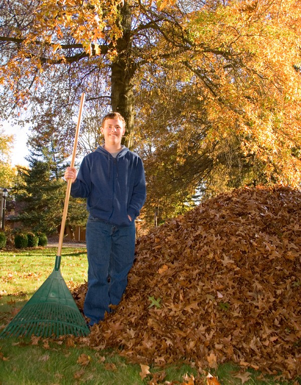 Young Man Next to Pile of Raked Leaves