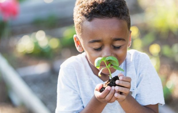 Child Holding and Smelling a Small Plant