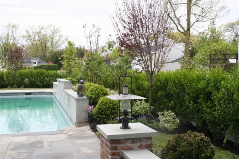 Landscaping Around Swimming Pool