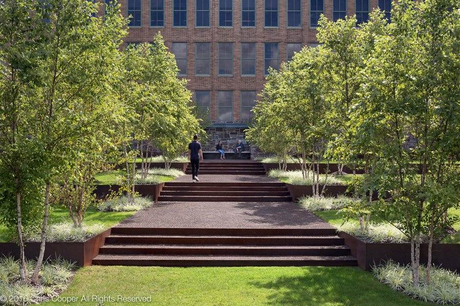 Tree-Lined Steps to Alcatel-Lucent Offices