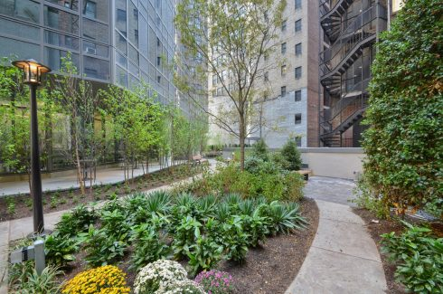Urban Landscaping at 160 Madison Ave in NYC