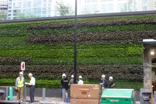 WTC Liberty Park Green Wall